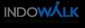 Logo Blue & Black VILLA
